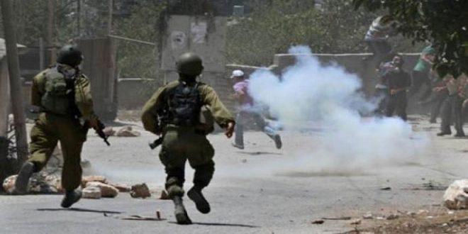 فلسطين - الاحتلال - العيسوية