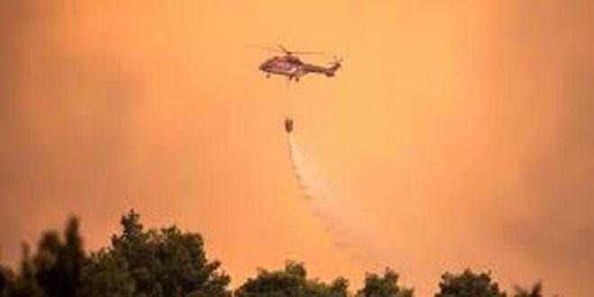 السلطات اليونانية تجلي 500 شخص بسبب حريق في جزيرة إيفيا