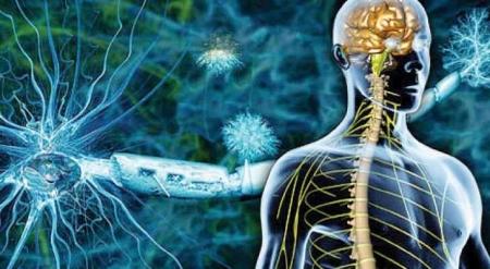 التصلب اللويحي وأعراضه