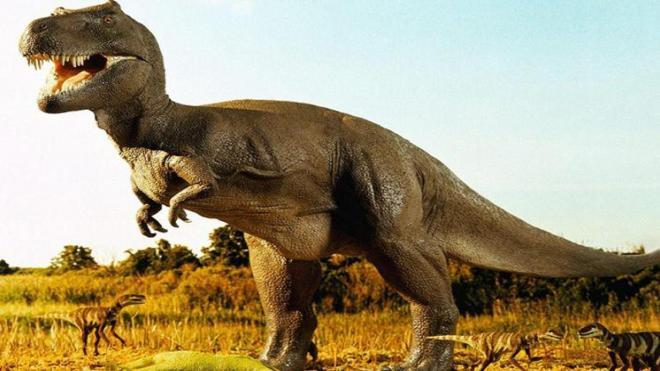 العثور على هيكل عظمي لديناصور عملاق