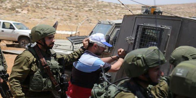 اعتقالات في الضفة.. ومستوطنون يقطعون الأشجار شمال شرق الخليل