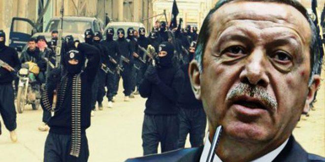 موقع سلوفاكي: إرهابيو أردوغان في سورية باتوا خطراً على نظامه
