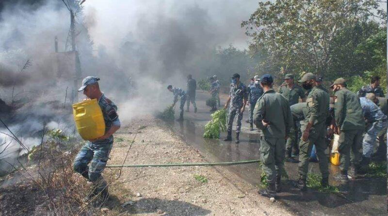 بمؤازرة وحدات الجيش والأهالي.. السيطرة على جميع الحرائق في محافظة اللاذقية