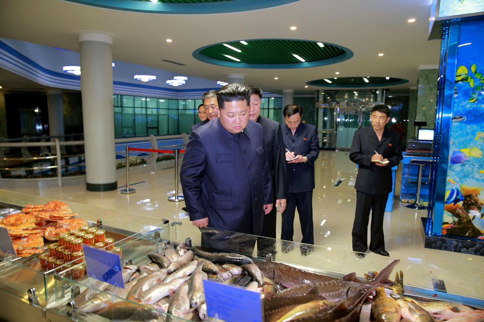 معرض صور حول تاريخ حزب العمل الكوري خلال عهد الرئيس الكوري الديمقراطي كيم جونغ وون
