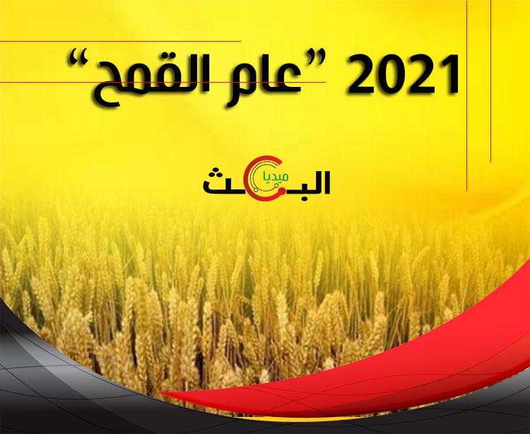 """2021 """"عام القمح"""""""